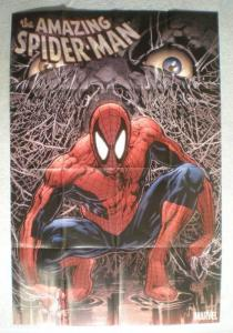 AMAZING SPIDERMAN Promo Poster, 24x36, 2007,  Unused, more in our st