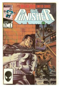 Punisher 2   Limited Series