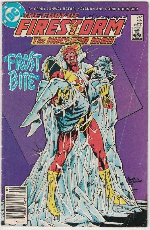 5 The Fury of Firestorm DC Comic Books # 20 21 22 25 26 Killer Frost BH44