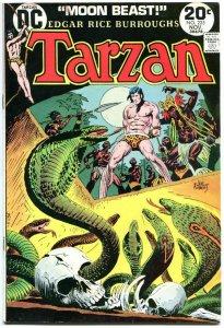TARZAN of the APES #225, FN, Edgar Rice Burroughs, Joe Kubert,1972,more in store