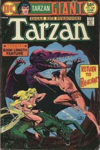 Tarzan (DC) #238 FN; DC | save on shipping - details inside