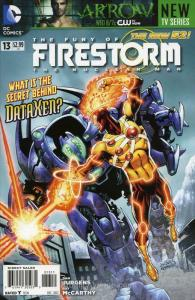 Fury of the Firestorm: The Nuclear Men #13 FN; DC | save on shipping - details i