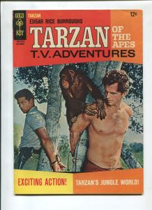 TARZAN #162 1966-GOLD KEY-EDGAR RICE BURROUGHS-VF