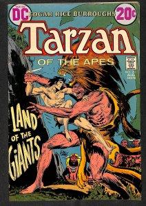 Tarzan #211 (1972)