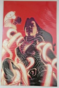 GI Joe (2008, IDW) #16-20 All 15 Covers; Baroness