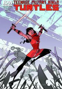 Teenage Mutant Ninja Turtles (5th Series) #13A VF; IDW | save on shipping - deta