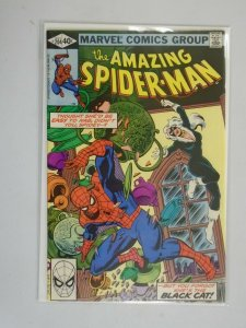Amazing Spider-Man #204 Black Cat appearance Direct edition 7.0 FN VF (1980)