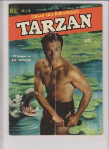 Edgar Rice Burroughs' Tarzan #19 VG february 1951 - lex barker photo cover dell