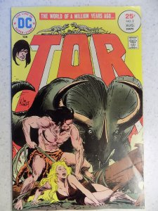 TOR # 2 DC BRONZE JUNGLE ACTION FANTASY KUBERT