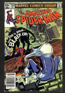 The Amazing Spider-Man #226 (1982)
