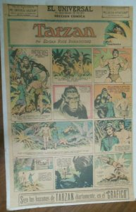 Tarzan Sunday Page #585 Burne Hogarth from 5/24/1942 in Spanish ! Full Page Size