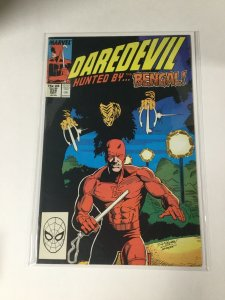 Daredevil 258 Nm Near Mint Marvel