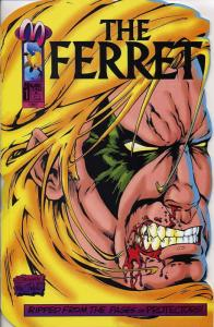 Ferret, The (2nd Series) #1SC VF/NM; Malibu | save on shipping - details inside
