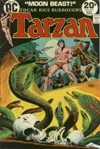 Tarzan (DC) #225 FN; DC | save on shipping - details inside
