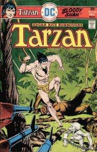 Tarzan (1972 series) #244, Fine- (Stock photo)