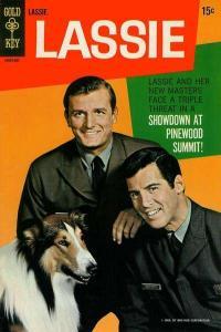 Lassie #70, Good (Stock photo)