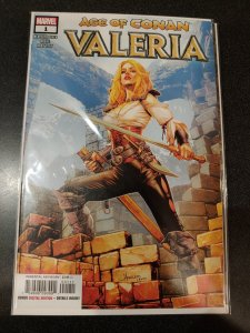 ​AGE OF CONAN VALERIA #1 NM HOT ARTWORK FINCH
