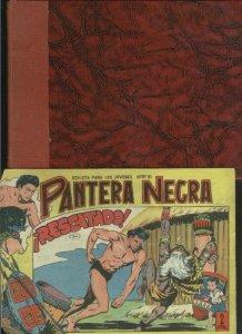 Pantera Negra coleccion
