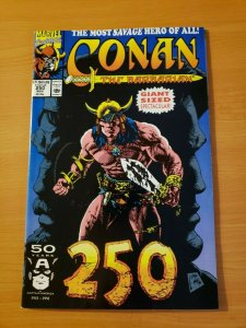 Conan The Barbarian #250 Direct Market Edition ~ NEAR MINT NM ~ 1991 Marvel