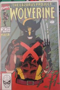 Wolverine 29 NM