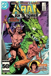 Arak Son of Thunder #47 (DC, 1985) VF