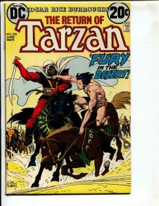 Tarzan-#220-1973-DC-BRONZE-AGE-Joe Kubert-NM-