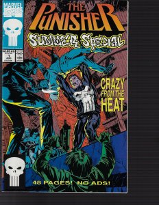 Punisher Summer Special #1 (Marvel, 1991)