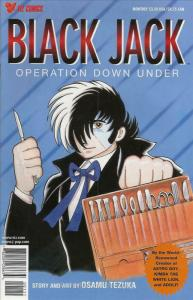 Black Jack (Viz) Special #2 VF/NM; Viz | save on shipping - details inside