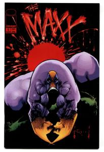 THE MAXX #1 1993 - IMAGE COMICS - HIGH GRADE nm-