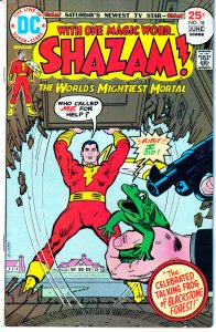 SHAZAM #18 The Celebratory Talking Frog