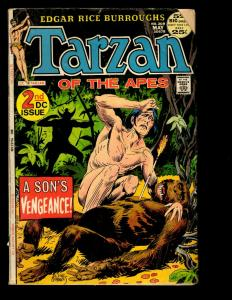 10 Tarzan DC Comics # 2 4 211 213 220 222 226 229(2) 100 Action Fantasy GK10