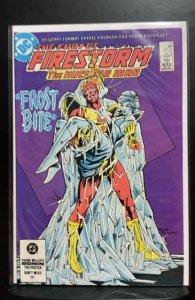 The Fury of Firestorm #20 (1984)