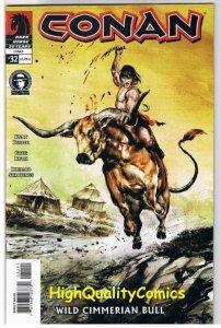 CONAN #32, NM+, Kurt Busiek, Wild Cimmerian Bull, 2004, more in store