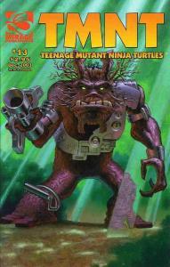 TMNT: Teenage Mutant Ninja Turtles #13 FN; Mirage | save on shipping - details i