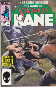 Sword of Solomon Kane #1