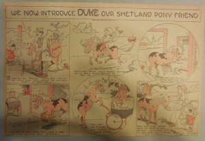 Duke The Shetland Pony Sunday #1 by Frank Leet from 1913 Half Page Size!