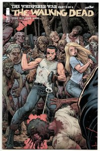 The Walking Dead #161 Adams Variant  (Image, 2016) NM