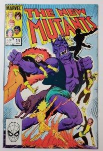 The New Mutants #14