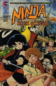 Ninja High School: The Special Edition #1 VF; Eternity | save on shipping - deta