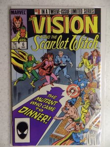 The Vision and the Scarlet Witch #6 (1986)
