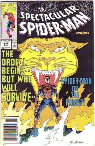 Spider-Man, Peter Parker Spectacular #171 (Feb-91) NM/NM- High-Grade Spider-Man