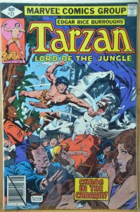 Tarzan #27 (1979) Rare Direct Edition!