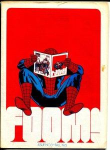 FOOM #3 1973-Marvel-Spider-man infinity cover-checklist-G