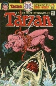 Tarzan (1972 series) #243, Fine- (Stock photo)