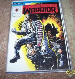 ETERNAL WARRIOR  lot of 11 comics    #,6,8,10 11 12 13 14,16,18-20  VALIANT