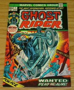 Ghost Rider (Vol. 1) #1 FN; Marvel | save on shipping - details inside