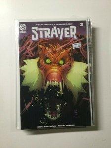 Strayer #3 (2016) HPA