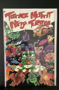 Teenage Mutant Ninja Turtles #40 (1991)
