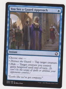 Magic the Gathering: Adventures in the Forgotten Realms - You See a Guard Approa