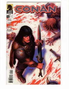 Conan #1 (VF/NM) Dark Horse ID#SBX2